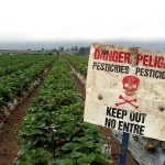 pesticides resources